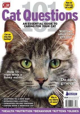 101 Cat Questions (Paperback)
