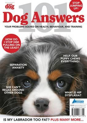 101 Dog Answers (Paperback)