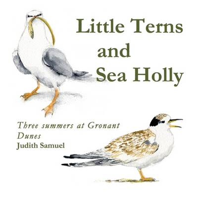 Little Terns and Sea Holly: Three Summers on Gronant Dunes (Paperback)