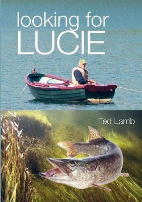 Looking for Lucie (Paperback)