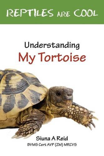 Reptiles are Cool!: Understanding My Tortoise (Paperback)
