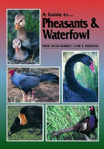 Pheasants and Waterfowl - A Guide to (Paperback)