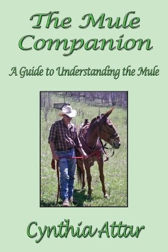 The Mule Companion: A Guide to Understanding the Mule (Paperback)