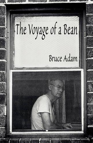 The Voyage of a Bean (Paperback)