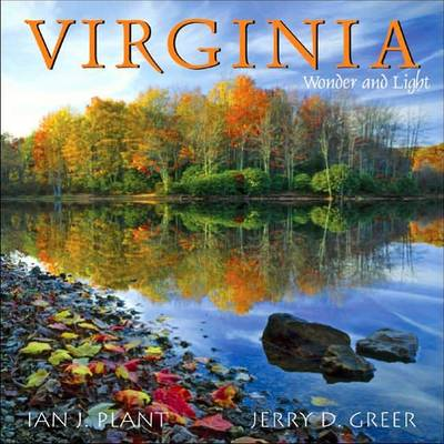 Virginia Wonder and Light - Wonder and Light (Paperback)