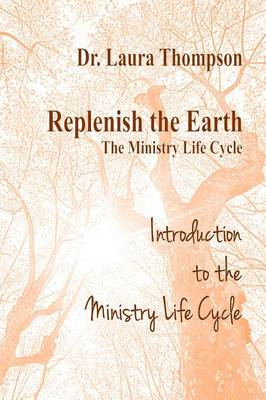 Introduction to the Ministry Life Cycle (Paperback)