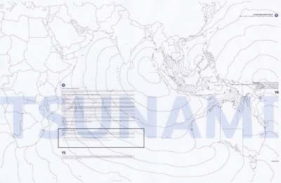 Tsunami: A Document of Devastation (Paperback)