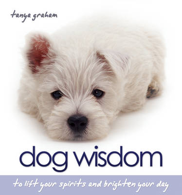Dog Wisdom: To Lift Your Spirits and Brighten Your Day (Hardback)