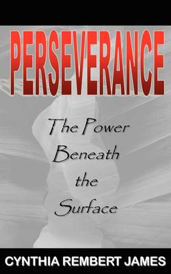 Perseverance: The Power Beneath the Surface (Paperback)
