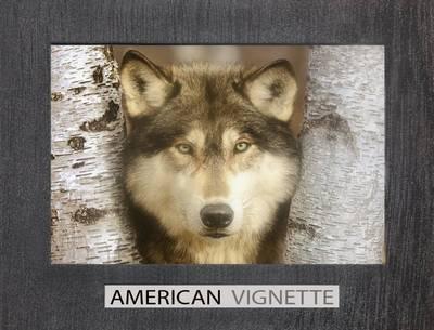 American Vignette (Paperback)