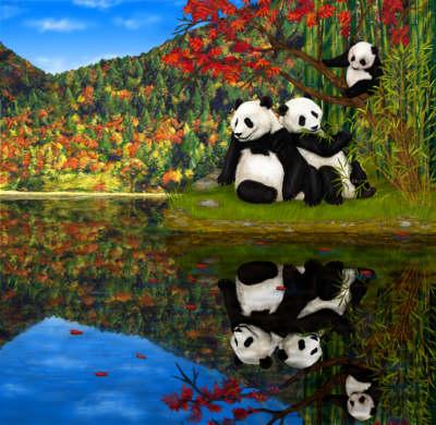 Panda Ming: The Journey of Survival (Hardback)
