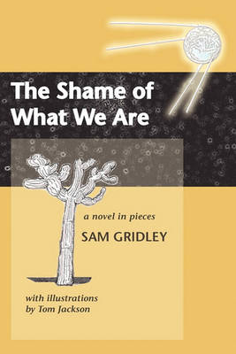 The Shame of What We Are (Paperback)