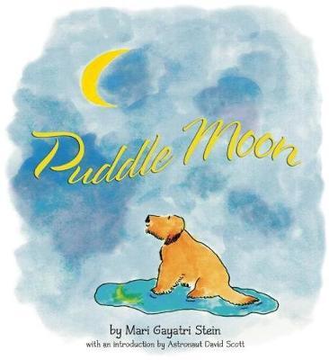 Puddle Moon (Hardback)