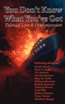You Don't Know What You've Got... Tales of Loss and Dispossession (Paperback)