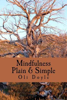 Mindfulness Plain & Simple (Paperback)