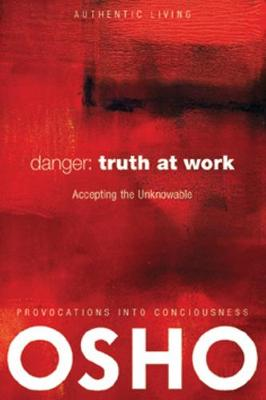 Danger: Truth at Work: The Courage to Accept the Unknowable (Paperback)
