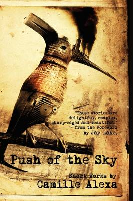 Push of the Sky (Paperback)