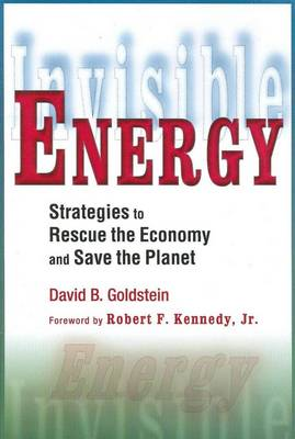 Invisible Energy: Strategies to Rescue the Economy and Save the Planet (Paperback)