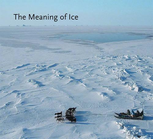 The Meaning of Ice (Hardback)