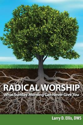 Radical Worship: What Sunday Morning Can Never Give You (Paperback)