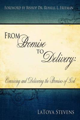 From Promise to Delivery: Conceiving and Delivering the Promises of God (Paperback)