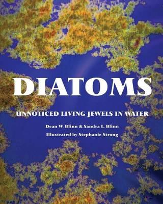 Diatoms: Unnoticed Living Jewels in Water (Paperback)