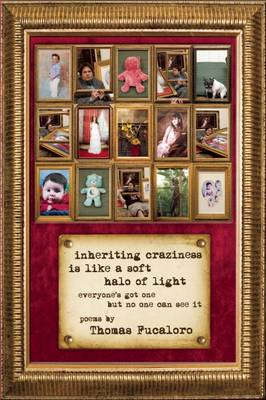 Inheriting Craziness Is Like a Soft Halo of Light: everyone's got one but no one can see it (Paperback)