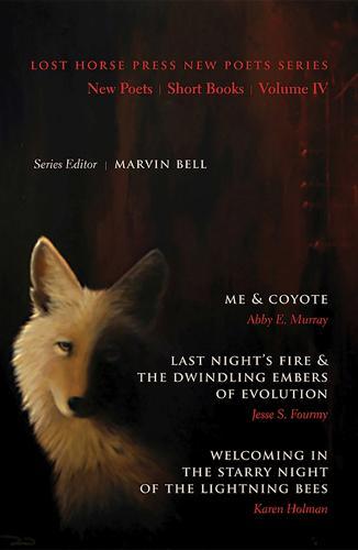 New Poets, Short Books, Volume IV (Paperback)