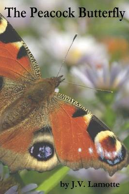 The Peacock Butterfly (Paperback)