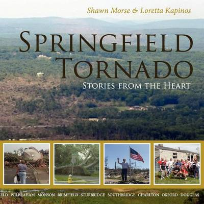 Springfield Tornado: Stories From The Heart (Paperback)