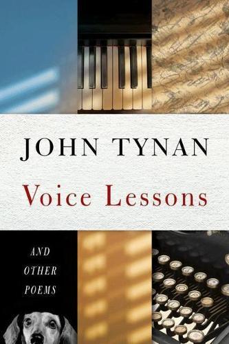 Voice Lessons (Paperback)