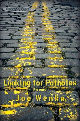 Looking for Potholes (Paperback)