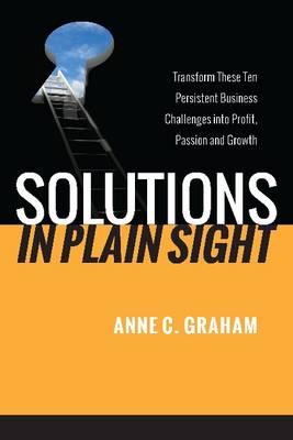 Solutions in Plain Sight (Hardback)