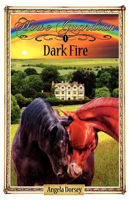 Dark Fire (Paperback)