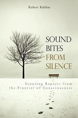 Sound Bites from Silence: Scouting Reports from the Frontier of Consciousness (Paperback)