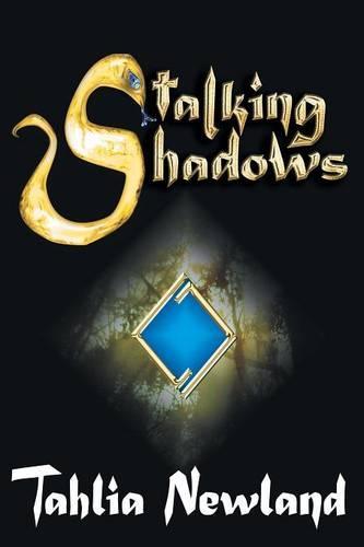 Stalking Shadows (Paperback)