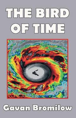The Bird of Time (Paperback)