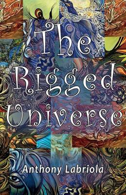 The Rigged Universe (Paperback)