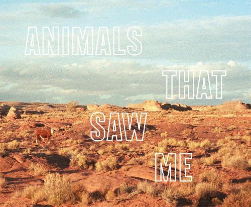 Ed Panar - Animals That Saw Me (Hardback)