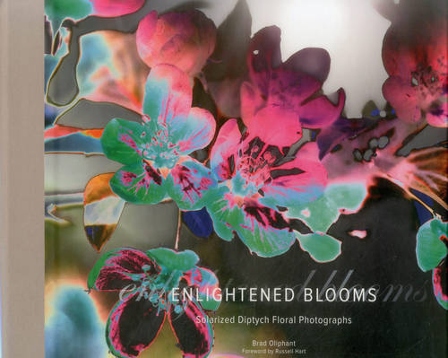 Enlightened Blooms: Solarized Diptych Floral Photographs (Hardback)