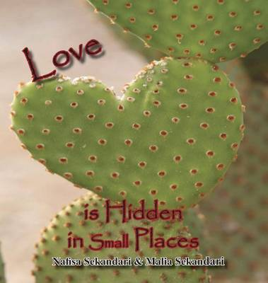 Love Is Hidden in Small Places (Hardback)