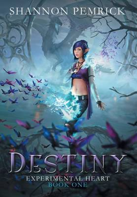 Destiny - Experimental Heart 1 (Hardback)