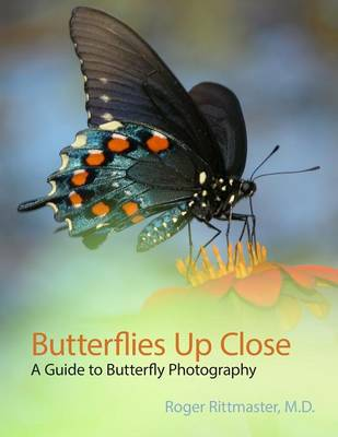 Butterflies Up Close (Paperback)