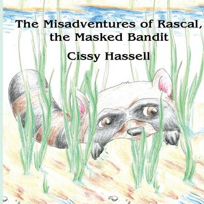 The Misadventures of Rascal, the Masked Bandit (Paperback)
