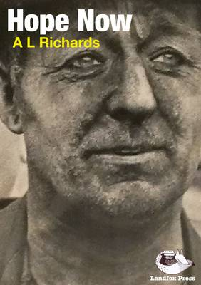 Hope Now (Paperback)