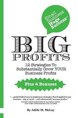 Small Business Huge Success - Big Profits!: 12 Strategies to Substantially Grow Your Business Profits (Paperback)