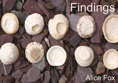 Findings (Paperback)