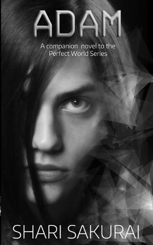 Adam - Perfect World (Paperback)