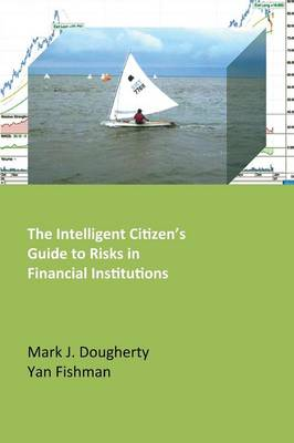 The Intelligent Citizen's Guide to Risks in Financial Institutions (Paperback)