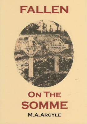Fallen on the Somme (Paperback)
